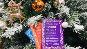 Wearside Women in Need Christmas Charity Santa